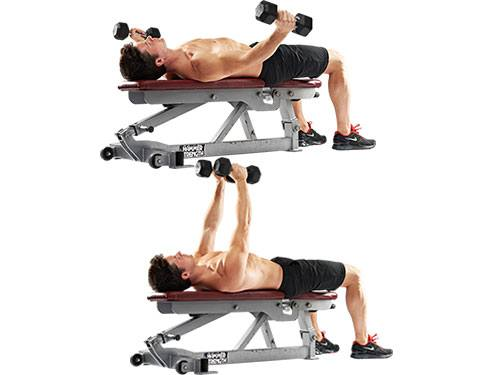 how to build chest muscles with dumbbells