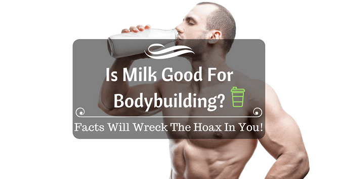Is Milk Good For Bodybuilding