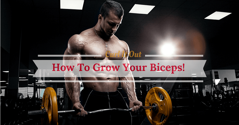 how to grow biceps