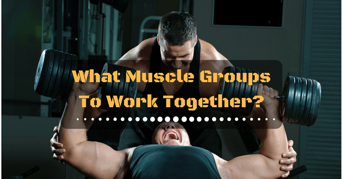 What Muscle Groups To Work Together