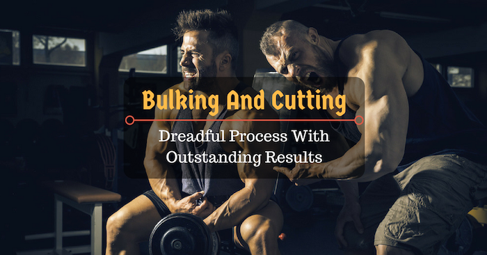 Bulking And Cutting: Dreadful Process With Outstanding Results
